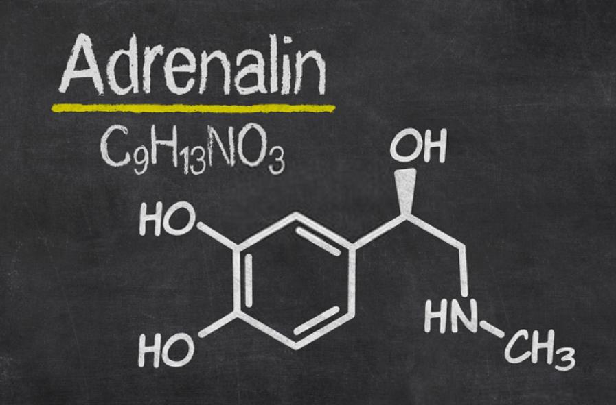 Tìm hiểu khái niệm Adrenaline là gì?